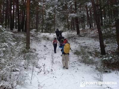 Ruta arroyo de la Chorranca; excursiones fin de semana desde madrid;excursiones avila